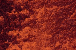 Vulcani: esplosione di vita