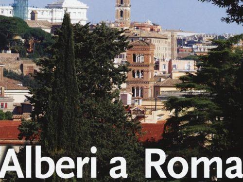 Alberi a Roma: che verde scoperta!