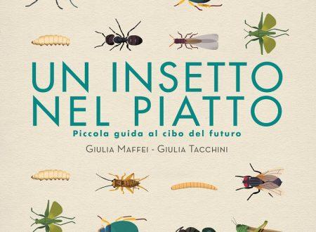 C'è un insetto nel piatto: perché no?