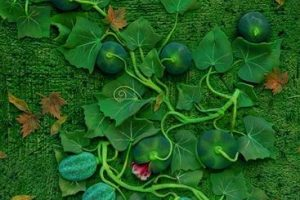 Nature Forever, i tappeti speciali di Piero Gilardi