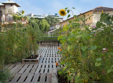 I tetti e l'orto in quota: la città si scopre