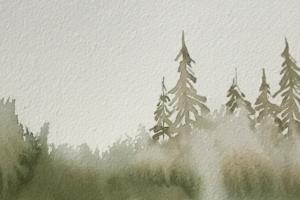 Il richiamo della foresta, festival della montagna