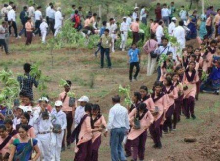 India: il verde è da record con 66 milioni di alberi piantati in 12 ore