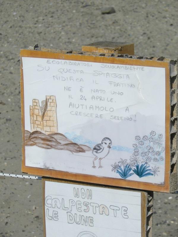 Torre Flavia, la spiaggia salvata dai ragazzini