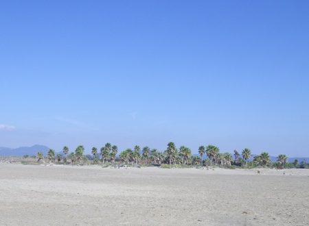 La spiaggia salvata dai ragazzini, a Torre Flavia