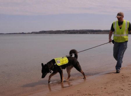 I cani fiutano l'inquinamento delle acque
