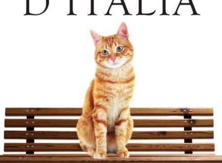 Gatti d'Italia: come fare senza?