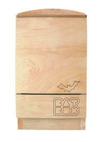Bat Box: case nuove per i pipistrelli