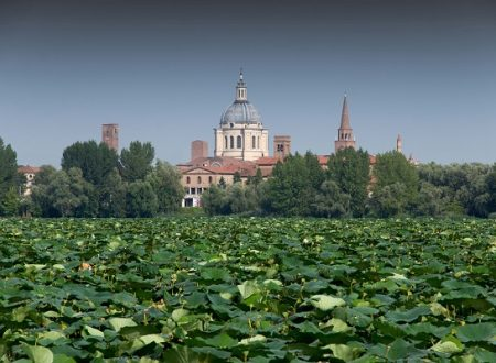 A Mantova il World Forum on Urban Forests