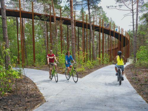 La pista circolare tra i boschi: Cycling trhough the Trees