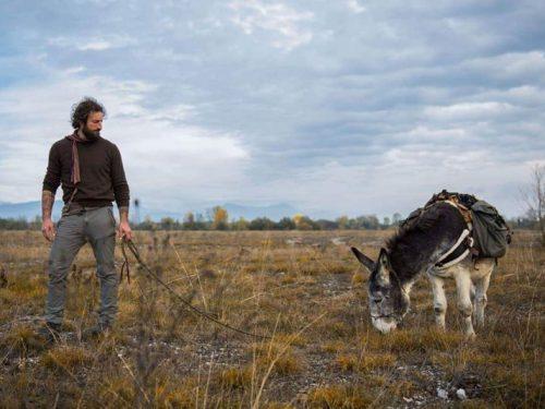 Di asini e di boschi: la storia di Alfio e Fiocco