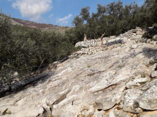 Macére, gli uliveti terrazzati di Vallecorsa